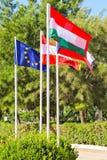 Banderas de los países de UE Imagenes de archivo