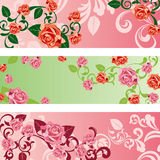 Banderas de Rose fijadas stock de ilustración