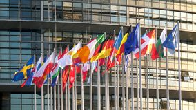 Banderas de todos los Estados miembros que agitan al Parlamento Europeo almacen de metraje de vídeo