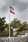 Banderas del Bluebonnet Imagenes de archivo