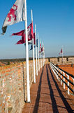 Banderas del castillo Gyula Imagen de archivo libre de regalías