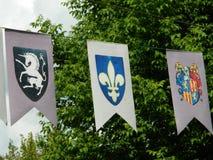 Banderas del escudo de armas Imagenes de archivo