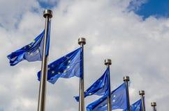 Banderas del Eu Fotos de archivo libres de regalías