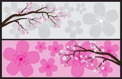 Banderas del flor Fotografía de archivo libre de regalías
