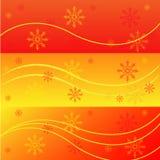 Banderas del invierno Fotografía de archivo libre de regalías