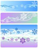 Banderas del invierno Foto de archivo