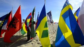 Banderas del mundo almacen de video