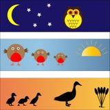 Banderas del pájaro fijadas Imagenes de archivo