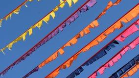 Banderas del partido almacen de metraje de vídeo