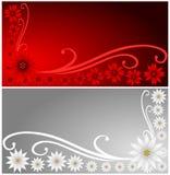 Banderas del Poinsettia Imágenes de archivo libres de regalías