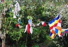 Banderas del rezo en árbol cerca del monasterio budista Imágenes de archivo libres de regalías