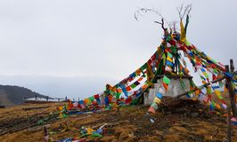 Banderas del rezo en el prado en la montaña de la nieve de Yulong, Yunnan, China de los yacs imagenes de archivo