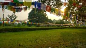 Banderas del rezo en Lumbini, Nepal imagen de archivo
