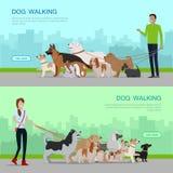 Banderas del servicio del perro que caminan profesional fijadas ilustración del vector