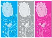 Banderas del tulipán Imágenes de archivo libres de regalías
