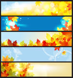 Banderas del vector fijadas/día hermoso del otoño Fotos de archivo