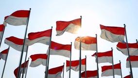Banderas del vuelo de Indonesia en la asta de bandera almacen de video