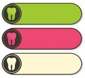 Banderas dentales coloridas con el diente Imagen de archivo libre de regalías