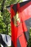 Banderas diseñadas medievales en Sighisoara, Transilvania Fotos de archivo