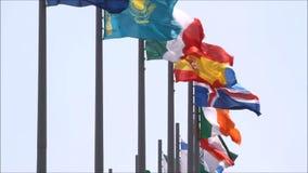 Banderas en el viento almacen de video