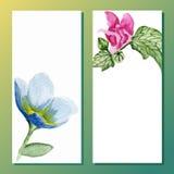 Banderas florales de la acuarela Imagen de archivo libre de regalías