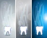 Banderas hermosas del diente Foto de archivo libre de regalías