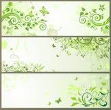 Banderas horizontales florales verdes Fotos de archivo