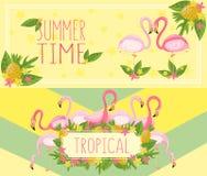 Banderas horizontales tropicales del tiempo de verano, elemento del diseño con vector de las hojas de palma, de las flores, de la ilustración del vector