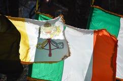 Banderas irlandesas y papales imagen de archivo libre de regalías