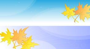 Banderas o cartel del otoño con las hojas de arce amarillas. Imagen de archivo libre de regalías