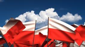 Banderas polacas que agitan stock de ilustración