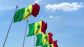 Banderas que agitan múltiples de Senegal contra el cielo azul metrajes
