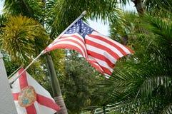 Banderas rodeadas por paisaje tropical imagenes de archivo