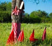 Banderas rojas en honor de Gauchito Gil, la Argentina Imagen de archivo