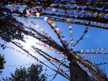 Banderas tibetanas del rezo en el sol foto de archivo