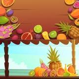 Banderas tropicales de la fruta de la isla fijadas Foto de archivo