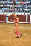 Banderillero, the torero who, on foot, places the darts in the bull. The banderillas is Brightly-coloured darts placed in the bull Royalty Free Stock Photos