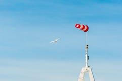 Banderuola orizzontalmente volante del windsock con cielo blu nei precedenti Grandi gabbiani degli uccelli che volano intorno Immagini Stock