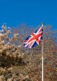 bandery europejskiej jacka Obraz Royalty Free