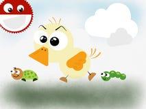 Bandes de canard Photographie stock