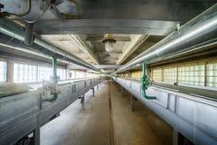 Bandes de conveyeur et tuyaux, partie de machines à chaînes pour disposer et déchets de traitement Photos libres de droits