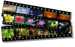 bandes de film Photos libres de droits