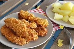 Bandes de poulet Photo libre de droits
