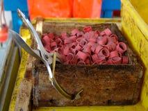 Bandes et bander de homard image stock