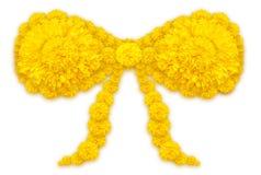 Bandform von Ringelblumen- oder Calendulablumen Lizenzfreie Stockbilder