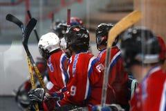 bandhockey royaltyfri bild