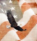 Bandiera americana, aquila calva volante e costituzione Fotografia Stock Libera da Diritti