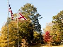 Bandiera americana in autunno Fotografia Stock Libera da Diritti