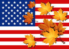 Bandiera americana Bandierina degli Stati Uniti d'America Immagine Stock