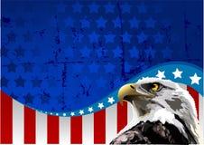 Bandiera americana dell'aquila calva Fotografia Stock